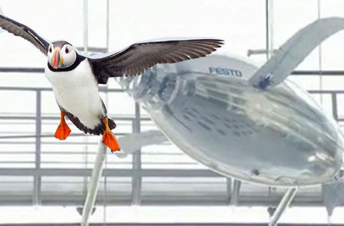 اڑنے والا روبوٹ ۔ تصویر : آئی این این