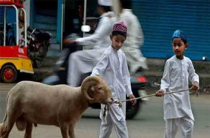 sacrificing animal - Pic : INN