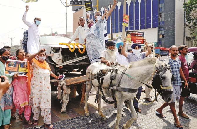 In amritsar, party workers protested in a horse-drawn carriage.Picture:PTI